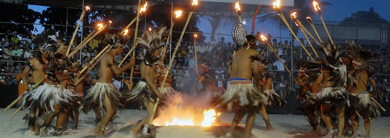 Tribo Terena